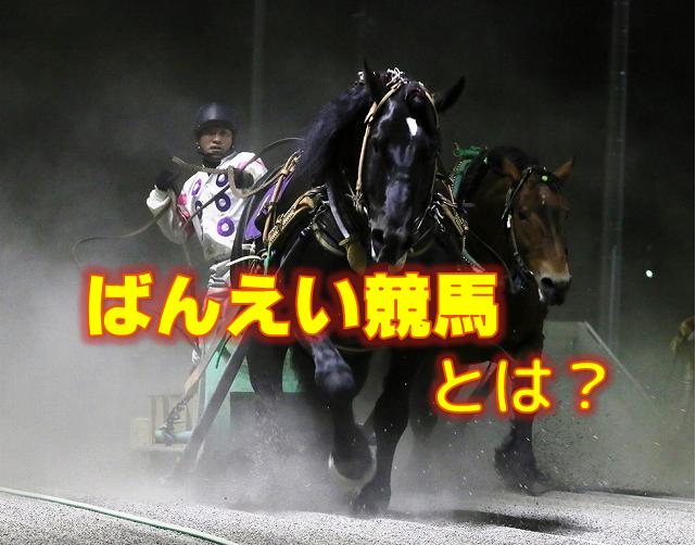 ねっとばんばキンタロー~ばんえい競馬とは-main1-img